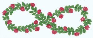Rosenacht klein