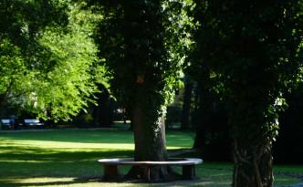 Der Ortenau Park in Bad Reichenhall - einer der besonderen Orte der Stadt