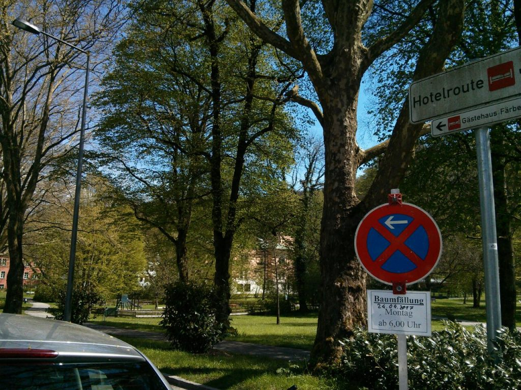 baumfaellungen_karlspark2