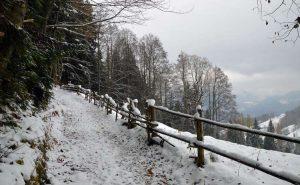 Mystisch-magische Wanderungen:  Winterwanderung auf den Brandkopf